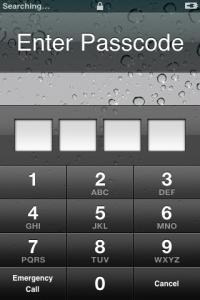 The iphone password screen.